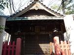 富岡八幡宮8.jpg