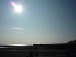 箱根神社2012 001.jpg