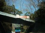 箱根神社2012 003.jpg